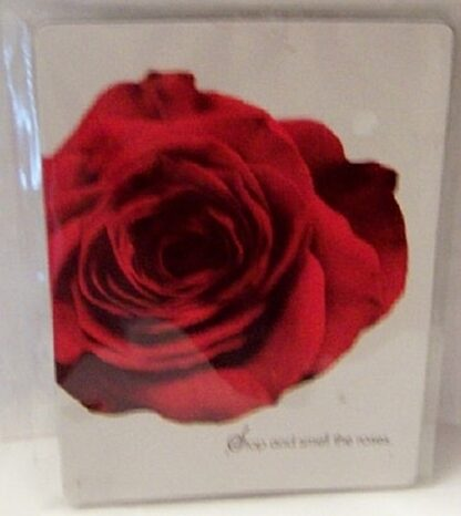 Rose Living Color Magnet New In Pack Front