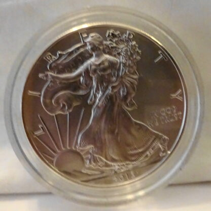 United States Mint American Eagle 2013 Silver Dollar Coin Unc Obverse