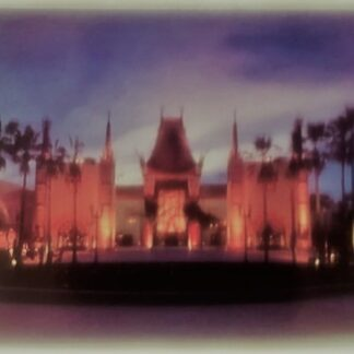 Disney Chinese Theater Postcard MGM Studios New Front